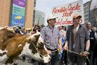 European dairy farmers at demonstration