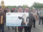 Milk producers from BDM Germany