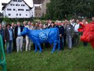 EMB representatives of 14 different countries in Kappel